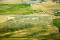 High above the Palouse Hills on the southeastern edge of Washington, Steptoe Butte offers unparalleled views of a truly unique landscape. The warm quartzite bluff stands out against soft hills of green and mauve, an occasional barn dotting the landscape. Colors seem to shift and change in the light.
