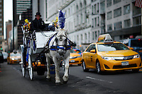 A horse-drawn cab rides through 59 street next to Central Park, in New York, 01/20/2016 NYC Mayor Bill de Blasio plans to reduce the number of carriages and restrict them to ride in Central Park. Photo by VIEWpress