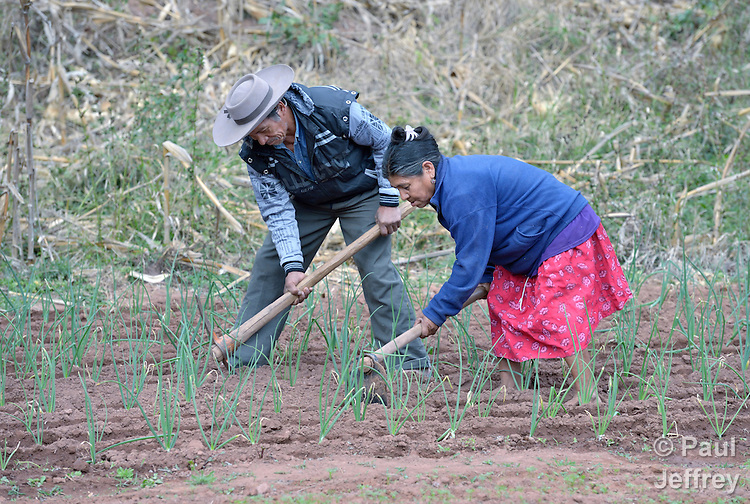 Edulia Vaquera and Gregorio Galarza work together in their garden in the Guarani indigenous village of Kapiguasuti, Bolivia. They and their neighbors started the gardens with assistance from Church World Service, supplementing their corn-based diet with nutritious vegetables and fruits.