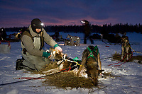 Ed Iten boots his dogs in the early morning at the Finger Lake checkpoint during Iditarod 2008