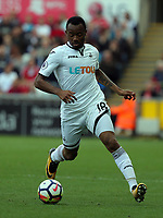 Jordan Ayew of Swansea City in action during the Premier League match between Swansea City and Watford at The Liberty Stadium, Swansea, Wales, UK. Saturday 23 September 2017