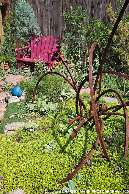 Dan Johnson took some srcap metal and  made an interesting sculpture  for his backyard garden.