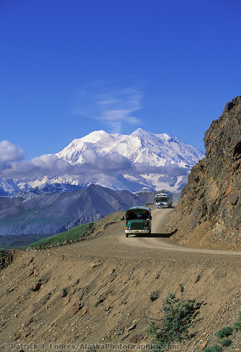 North And South Peaks Of Denali, North America's Highest Mountain, Park Tour Buses On Gravel Park Road, Denali National Park, Alaska