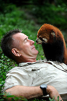 Nigel Marven, British wildlife presenter and television producer, poses with a female red panda named Haozi (Meaning mouse) at Chengdu Panda Base in Sichuan province, China. 25-Jul-2010
