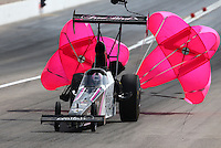Mar 29, 2014; Las Vegas, NV, USA; NHRA top alcohol dragster driver Ashley Sanford during qualifying for the Summitracing.com Nationals at The Strip at Las Vegas Motor Speedway. Mandatory Credit: Mark J. Rebilas-