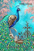 Dona Gelsinger, STILL LIFE STILLLEBEN, NATURALEZA MORTA, flowers, Blumen, flores, paintings+++++,USGE1411J,#I#,#F#