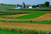 Cornfields and farm <br />