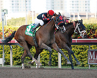 Musical Romance(5) and jockey Juan Leyva get by Hot Summer(8) late in the stretch, on their way to winning the Inside Information Stakes(G2) at Gulfstream Park. Hallandale Beach, Florida. 03-17-2012
