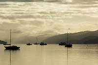 Moored boat at dawn, Marlborough sounds, New Zealand