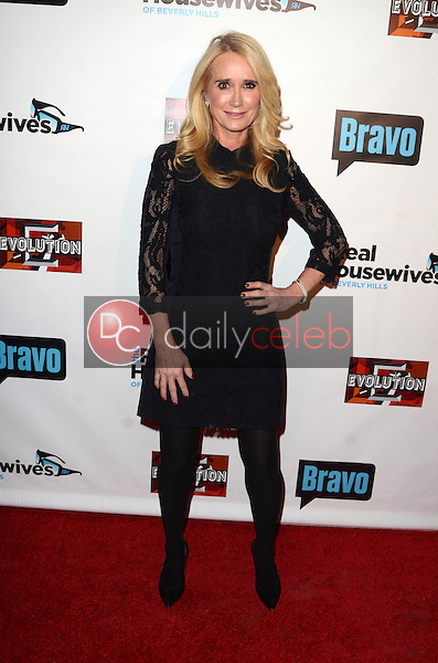 """Kim Richards<br /> at """"The Real Housewives of Beverly Hills"""" Season 7 Premiere Party, Sofitel Hotel, Beverly Hills, CA 12-02-16<br /> David Edwards/DailyCeleb.com 818-249-4998"""