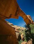Arches National Park, UT<br /> Wall arch above a sandstone ridge