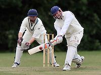Cricket 2009-06
