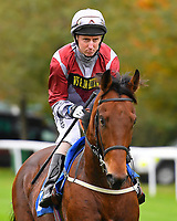 Beyon Equal ridden by Martin Dwyer goes down to the start of The Bathwick Car & Van Hire Novice Auction Stakes during Bathwick Tyres Reduced Admission Race Day at Salisbury Racecourse on 9th October 2017
