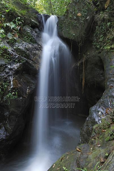 .Ben's Bluff Waterfall, Cockscomb Basin Wildlife Sanctuary, Belize