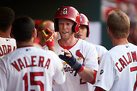 Springfield Cardinals outfielder Jeremy Hazelbaker (26) high fives teammates after scoring a run during a game against the Frisco RoughRiders  on June 4, 2015 at Hammons Field in Springfield, Missouri.  Frisco defeated Springfield 8-7.  (Mike Janes/Four Seam Images)