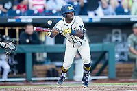 Michigan Wolverines second baseman Ako Thomas (4) attempts to bunt against the Vanderbilt Commodores during Game 1 of the NCAA College World Series Finals on June 24, 2019 at TD Ameritrade Park in Omaha, Nebraska. Michigan defeated Vanderbilt 7-4. (Andrew Woolley/Four Seam Images)