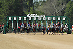 April 11, 2015: The start of the Oaklawn Hanicap at Oaklawn Park in Hot Springs, AR. Justin Manning/ESW/CSM