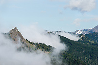 Steeple Rock near Hurricane Ridge in fog/clouds, Olympic National Park, WA.  Summer.