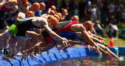 01 JUN 2013 - MADRID, ESP - Competitors dive into the water for the start of their Masters sprint distance race at Casa de Campo in Madrid, Spain (PHOTO (C) 2013 NIGEL FARROW)
