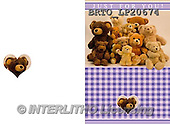 Alfredo, CHILDREN BOOKS, BIRTHDAY, GEBURTSTAG, CUMPLEAÑOS, paintings+++++,BRTOLP20674,#BI# ,teddy bears