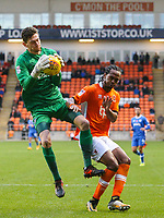 Portsmouth's Luke McGee gathers the ball ahead of Blackpool's Nathan Delfouneso <br /> <br /> Photographer Alex Dodd/CameraSport<br /> <br /> The EFL Sky Bet League One - Blackpool v Portsmouth - Saturday 11th November 2017 - Bloomfield Road - Blackpool<br /> <br /> World Copyright &copy; 2017 CameraSport. All rights reserved. 43 Linden Ave. Countesthorpe. Leicester. England. LE8 5PG - Tel: +44 (0) 116 277 4147 - admin@camerasport.com - www.camerasport.com