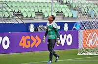 SÃO PAULO, SP, 08.05.2015 - TREINO - PALMEIRAS - Fernando Prass do Palmeiras durante treino da equipe no Allianz Parque da Barra Funda região oeste de São Paulo, nesta sexta-feira, 08.  (Foto: Bruno Ulivieri/Brazil Photo Press/Folhapress)
