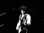 Bob Dylan 1978.© Chris Walter.