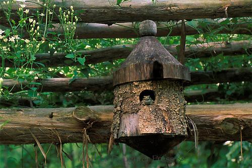 Toad sitting in handmade birdhouse on top of garden arbor