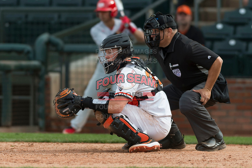 Oregon State Beavers catcher Adley Rutschman (35) during a game against the New Mexico Lobos on February 15, 2019 at Surprise Stadium in Surprise, Arizona. Oregon State defeated New Mexico 6-5. (Zachary Lucy/Four Seam Images via AP)
