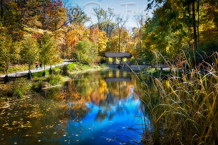 Autumn photo of Hills and Dales Park, Kettering Ohio