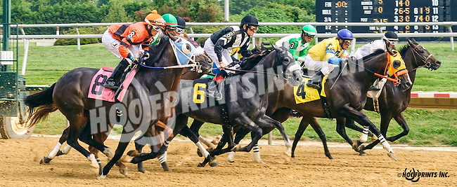 Shoppingforsilver winning at Delaware Park on 9/2/16