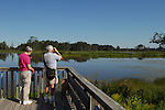 viewing platform seney NWR