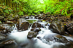 Pipiwai Stream cascading through bamboo forest, Haleakalā National Park, Maui, Hawaii.