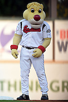 Nashville Sounds mascot Ozzie during an on field promotion in between innings during a game against the Omaha Storm Chasers on May 19, 2014 at Herschel Greer Stadium in Nashville, Tennessee.  Nashville defeated Omaha 5-4.  (Mike Janes/Four Seam Images)