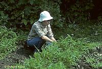 HS18-017z  Weeding garden, carrots