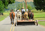Amishman on rural road with four horse team and mower. Nippenose Valley, PA.