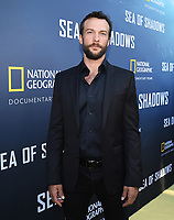 HOLLYWOOD, CALIFORNIA - JULY 10: Kyle Schmid attends the National Geographic Documentary Films' premiere of 'Sea Of Shadows' at NeueHouse Los Angeles on July 10, 2019 in Hollywood, California. (Photo by Frank Micelotta/National Geographic/PictureGroup)