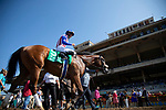 DEL MAR,CA-SEPTEMBER 01: Bellafina,ridden by Flavien Prat, after winning the Del Mar Debutante at Del Mar Race Track on September 1,2018 in Del Mar,California (Photo by Kaz Ishida/Eclipse Sportswire/Getty Images)