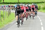 David Lopez Garcia (ESP) Team Sky leads the peloton during Stage 1 of the Criterium du Dauphine 2017, running 170.5km from Saint Etienne to Saint Etienne, France. 4th June 2017. <br /> Picture: ASO/A.Broadway | Cyclefile<br /> <br /> <br /> All photos usage must carry mandatory copyright credit (&copy; Cyclefile | ASO/A.Broadway)