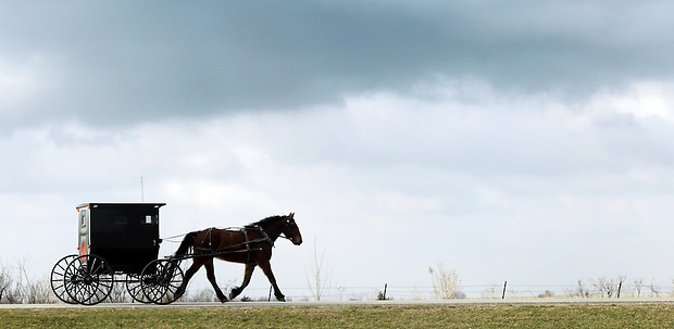 A horse and buggy travels a roadway east of Drakesville in southeast Iowa's Davis County.   It is among only a handful of rural Iowa counties in the 2010 Census to gain population (2.4 percent).  Much of that population growth is due to a steadily growing Amish population.  (Christopher Gannon/The Des Moines Register)