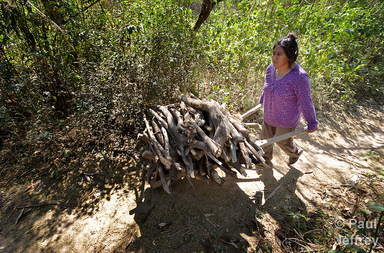 A Wichi indigenous woman collects firewood in the forest near her home in Lote 75, an indigenous neighborhood of Embarcacion, Argentina. The Wichi in this area, largely traditional hunters and gatherers, have struggled for decades to recover land that has been systematically stolen from them by cattleraisers and large agricultural plantations.