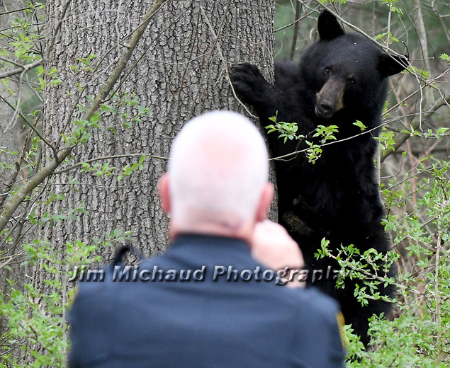 Police Stand Off -  Click on the photo to see more of the Jim Michaud Collection