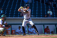 Glendale Desert Dogs right fielder Logan Hill (37), of the Pittsburgh Pirates organization, at bat in front of catcher Sean Murphy (12) during an Arizona Fall League game against the Mesa Solar Sox on October 28, 2017 at Sloan Park in Mesa, Arizona. The Solar Sox defeated the Desert Dogs 9-6. (Zachary Lucy/Four Seam Images)