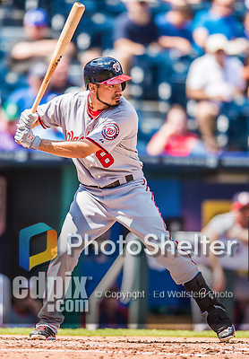 25 August 2013: Washington Nationals infielder Anthony Rendon in action against the Kansas City Royals at Kauffman Stadium in Kansas City, MO. The Royals defeated the Nationals 6-4, to take the final game of their 3-game inter-league series. Mandatory Credit: Ed Wolfstein Photo *** RAW (NEF) Image File Available ***
