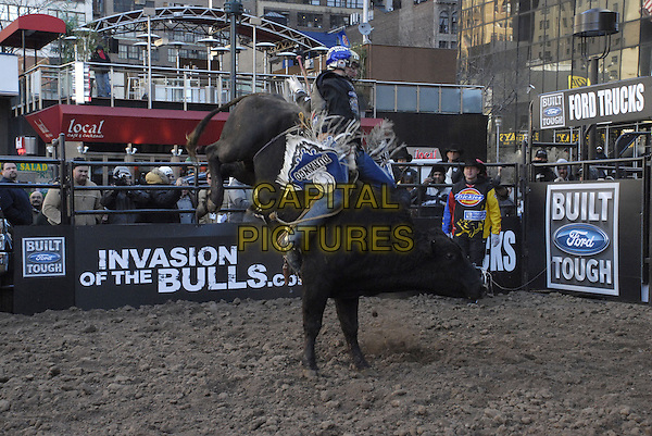 SEAN WILLINGHAM rides SNAPSHOT.Ford Trucks Professional Bull Riders (PBR) Invasion of the Bulls at the corner of 33rd Street and 8th Avenue, New York, New York, USA..January 3rd, 2008.full length animal sport bucking gesture throwing cowboy.CAP/ADM/BL.©Bill Lyons/AdMedia/Capital Pictures. *** Local Caption ***