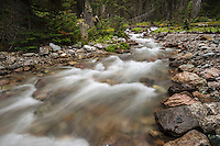 Mountain stream feeding Lake O'Hara, Yoho National Park, Canada