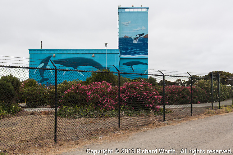 Murals of Whales,maybe near life size, adorn this waste water treatment plant on the eastern shores of San Francisco Bay, California.