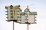 Sparrow houses on poles.