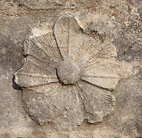 Detail of a flower relief from the Temple of Apollo, built 4th century BC, at Letoon, near Xanthos, Antalya, Turkey. The Temple of Apollo was decorated with Doric friezes and also had fine floor mosaics. The Letoon or Sanctuary of Leto was the sacred cult centre of Lycia, its most important sanctuary, and was dedicated to the 3 national deities of Lycia, Leto and her twin children Apollo and Artemis. Leto was also worshipped as a family deity and as the guardian of the tomb. The site is 10km South of the ancient city of Xanthos in Lycia, near the modern-day village of Kumluova, Fethiye. Founded in the 6th century BC, the Greek site also flourished throughout Roman times, and a church was built here in the Christian era. The site was abandoned in the 7th century AD. Picture by Manuel Cohen