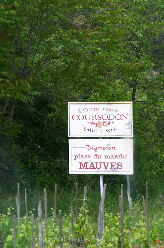 vineyard domaine coursodon mauves rhone france